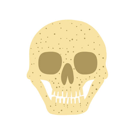 Human skull isolated on white background. Spooky Halloween decoration. Death concept. Flat style drawing. Design for poster, card, invitation. Stock vector illustration.