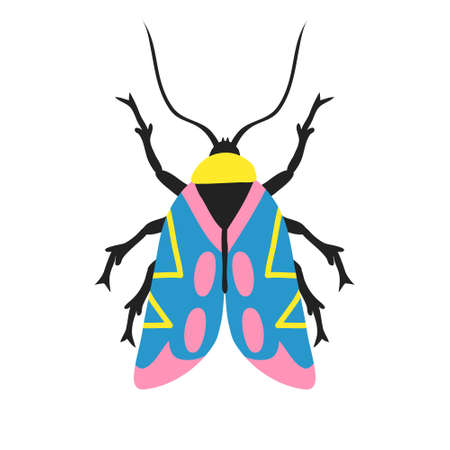 Fun multicolor exotic moth isolated on white background. Cute flying insect with antennae and colorful wings. Beautiful trendy design for shirt, poster. Doodle style drawing. Stock vector illustration