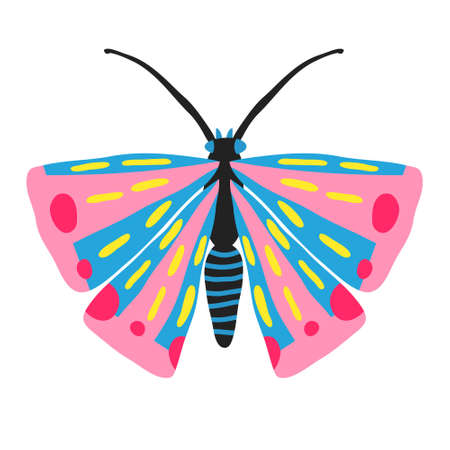 Beautiful butterfly isolated on white background. Hand drawn insect with big wings and antennae. Flat style drawing. Cute design for shirt, mug, poster. Trendy stock vector illustration. Illustration
