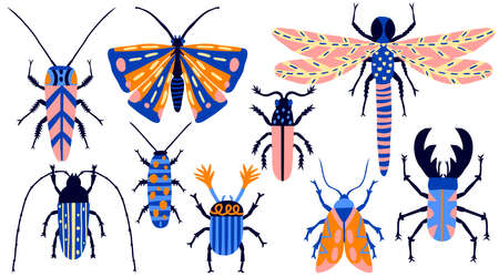 Collection set of insects isolated on white background. Fun multicolor flat style drawing. Hand drawn beetle, butterfly, moth, bug, cockroach, dragonfly. Cute colorful Modern stock vector illustration