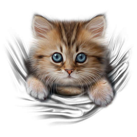 hand-drawing portrait of a cute kitten with blue eyes peeking out of the pocket isolated on white background Stok Fotoğraf