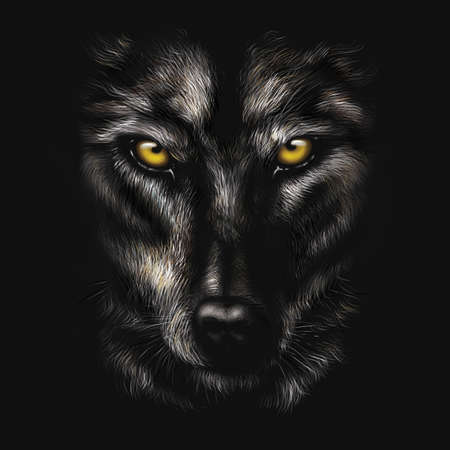 hand-drawing portrait of a black wolf on a black background Stockfoto