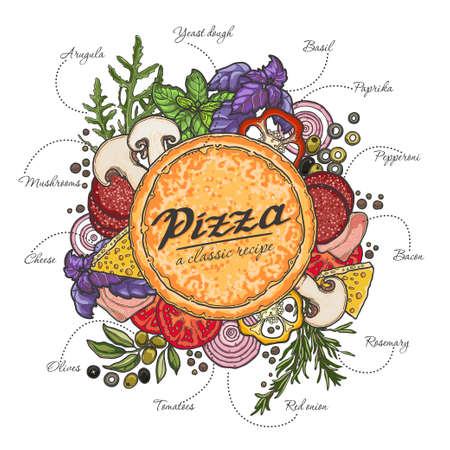 Pizza and ingredients on white background, cheese, vegetables, meat, recipe. Çizim
