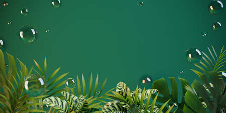 Green field for the message, framed by tropical plants and soap bubbles. 3-d render. 3-d illustration. Stock Photo