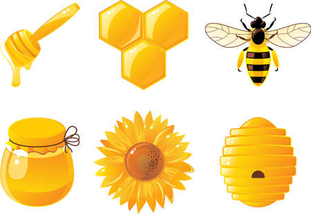 honey bees: 6 bee and honey icons Illustration