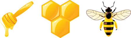 honey icons Vector