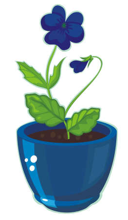 Flower forget-me-not corner Vector