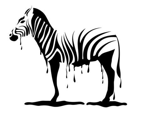 zebra loosing its stripes  Vector