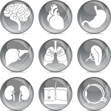 gray balls medical icons  Vector