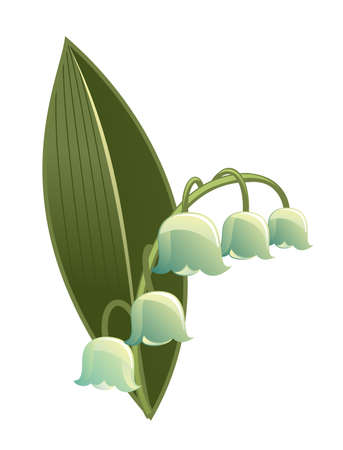 lily buds: lily of the valley isolated on white Illustration
