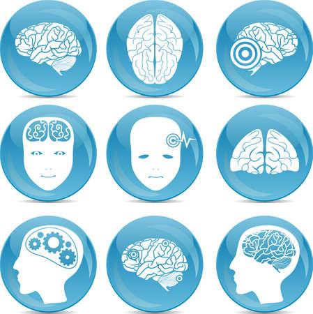 set of brain icons Stock Vector - 14987625
