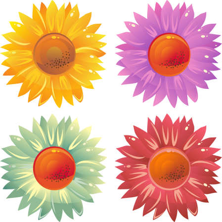 girlie: set of isolated on white colourful flowers daisy  Illustration