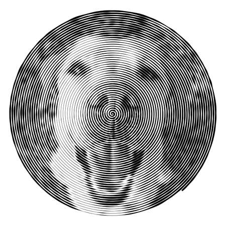 optical image: Vector spiral with the dog. Hypnotic spiral line with different width creates the monochromatic image of golden labrador retriever dog. Optical illusion. Illustration