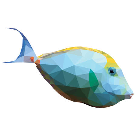 naso: Polygonal illustration of a tropical unicornfish. Silhouette of a fish, triangle low polygon style. Geometrical illustration of white and yellow orange spine unicorn fish isolated on white background