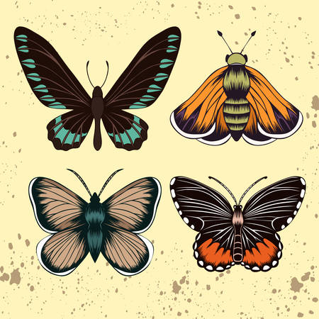 Collection of hand drawn butterflies Illustration