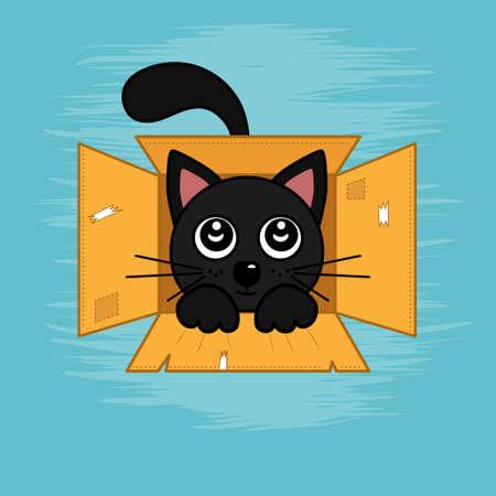 Black cat lies in box