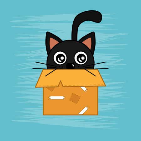 Black cat hides in carton box