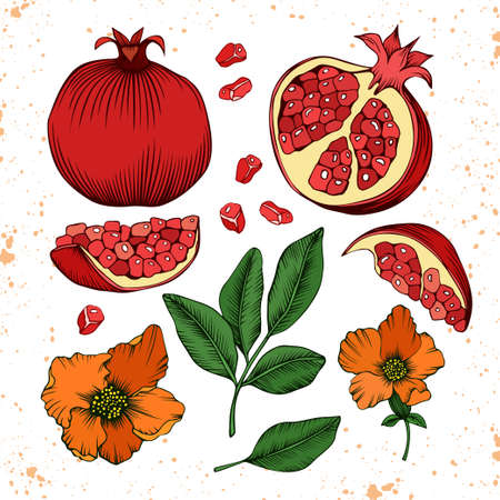 Whole and sliced pomegranate fruits, grains, leaves and flowers