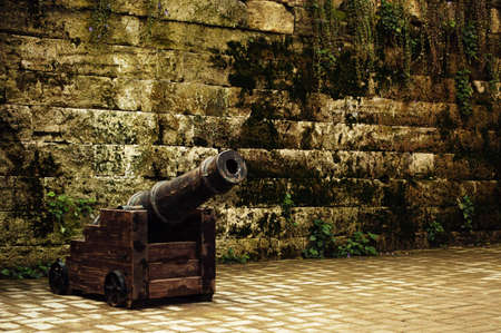 An ancient cannon on wheels. Beautiful vintage background with plants and wall