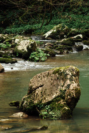 A stone in a mountain river. Beautiful landscape. Background