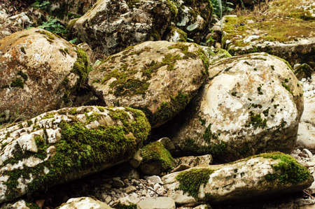 Large stones covered with moss. Beautiful background