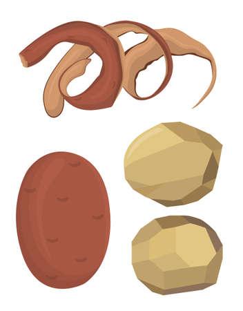 Vector illustration of potatoes, peeled potatoes, potato peel Ilustracja