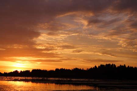 turba: Declinaci�n sobre los pantanos de la turba. Finales del verano. Los d�as calientes pasados. Foto de archivo
