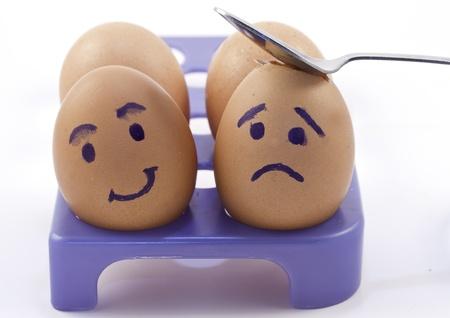 albumen: closeup photo of eggs in a box