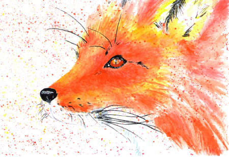 Lovely forest resident red fox. Watercolor illustration