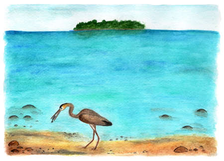 Rest on the Maldives. Watercolor illustration. Stock Photo