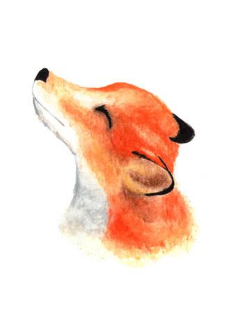 Cute little fox face. Watercolor.
