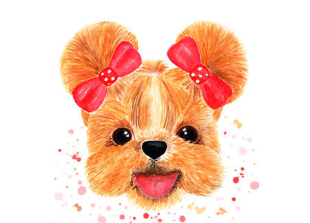 Muzzle of a shih-tzu with two braided red bows. Print with splashes and blots. Watercolor illustration. Graphics for T-shirts, drawing for cloth, childrens things.
