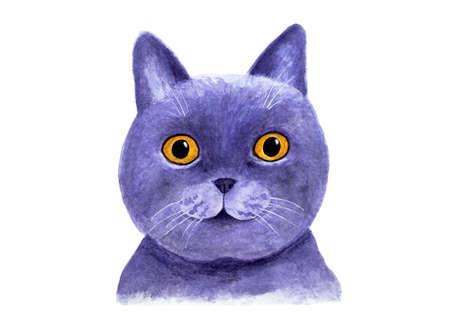 Porträt einer britischen blauen Katze. Aquarell Abbildung. Reizende Schnauze einer britischen blauen Katze. Drucken Sie für T-Shirts, Stoffe, Abdeckung für Notebooks. Zeichnen für Druck, Grafikdesign. Standard-Bild