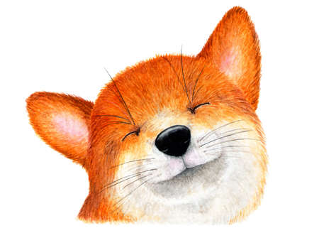 Portrait of a smiling Fox. Watercolor illustration. Smiling Fox. Background for design, printing on paper, fabrics. Illustration for advertising.