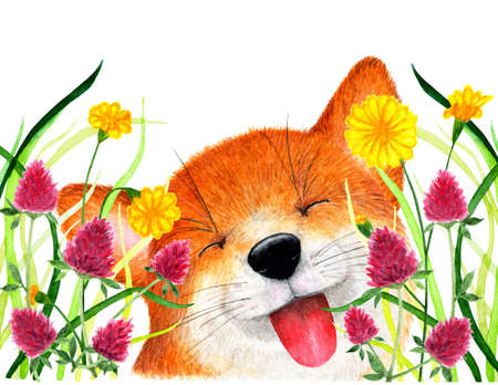 Fox sits in the grass. Watercolor illustration. The Fox hid in the grass, the red clover. Background for design, printing on paper, fabrics. Illustration for advertising.