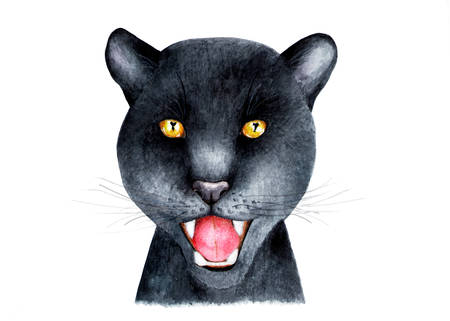 Portrait of a Panther.