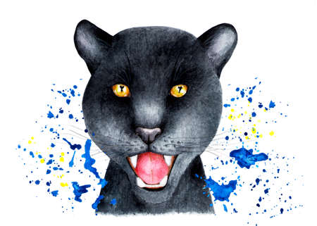 Portrait of a Panther in a spray of water. Stock Photo