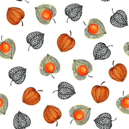 Seamless pattern with physalis. Watercolor illustration. Autumn illustration for printing. Botanical background.