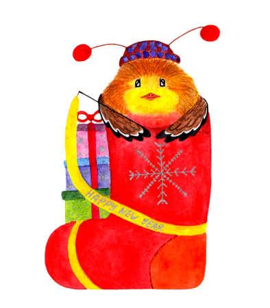 Cute winter bullfinch. Watercolor illustration. Bullfinch sits in a gift valenok. Christmas card. Christmas illustration painted in watercolor. Manual work. Stock Photo