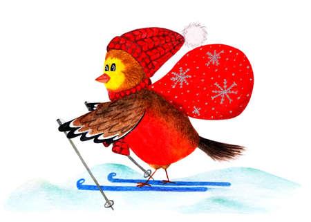 Bullfinch. Cute winter bird with a bag of gifts. Watercolor illustration. Bullfinch skiing. Christmas card. Christmas illustration painted with watercolors. Handwork.