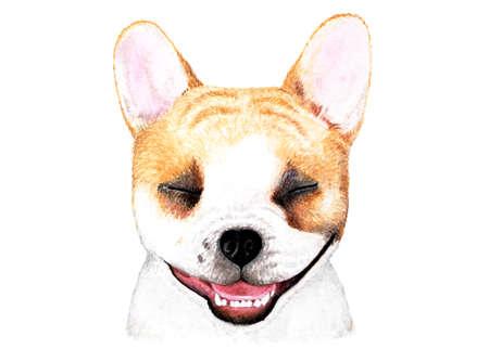 French bulldog. Watercolor illustration. Portrait of a smiling French bulldog. Dog enjoys life. Illustration for printing on t-shirts, animal feed, etc. Stock Photo