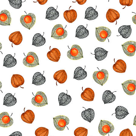 Pattern with physalis. Watercolor illustration. Autumn illustration for printing. Botanical background. Stock Photo