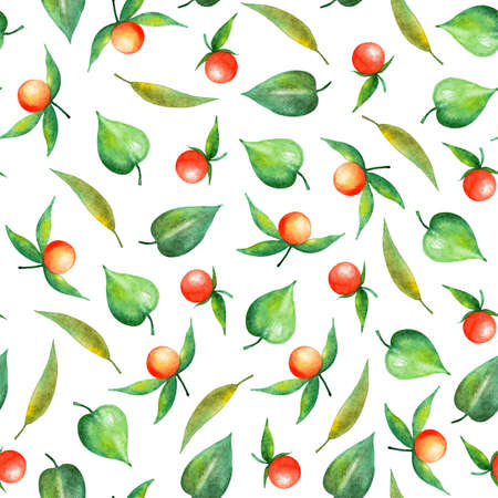 Pattern with berries of physalis. Watercolor illustration. Summer illustration for printing. Botanical background. Great pattern for summer dresses, skirts, bags.