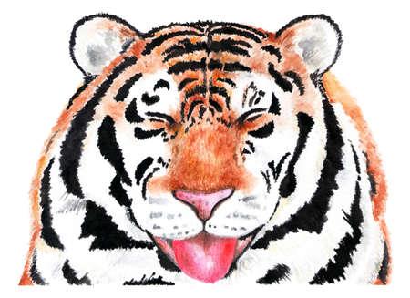 Portrait of tiger. Watercolor illustration. Tiger smiling at the camera. The animal enjoys life. Illustration for design, decor.