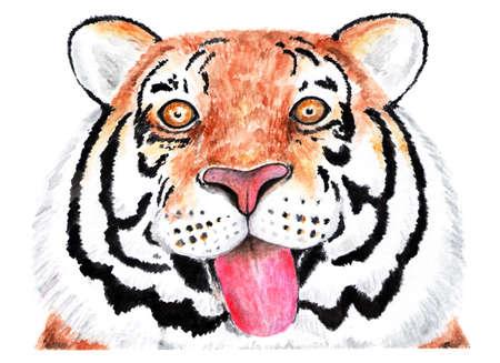 Portrait of tiger. Watercolor illustration. Tiger shows his tongue on camera. Happy tiger. Illustration for design, decor. Stock Photo