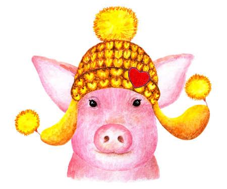 Portrait of pig. Watercolor illustration. Pig smiles at the camera. A pig in a winter hat enjoys life. Illustration for design, decor.