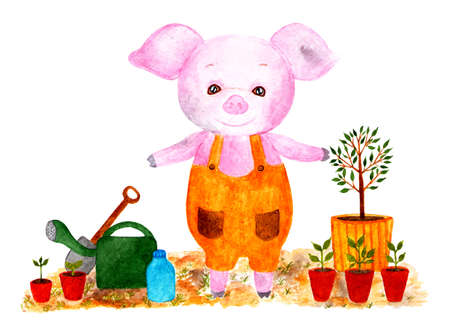 Cute pig. Watercolor illustration. Pig is preparing in planting seedlings, planting the garden. Monthly calendar with piglet. Illustration - May. Stock Photo