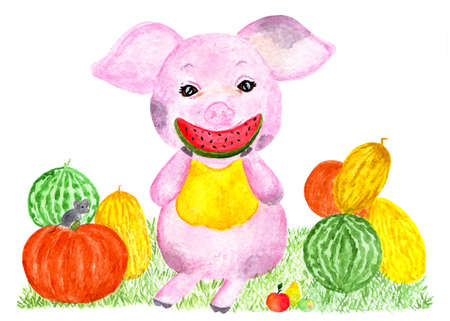 Cute pig. Watercolor illustration. Happy pig with a harvest of watermelons, melons, pumpkins. Monthly calendar with piglet. Illustration - August.