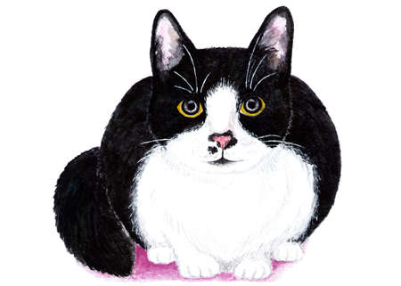 Black and white cat. Watercolor illustration. The cat is hiding and preparing to attack. Illustration for design, decor. Stock Photo