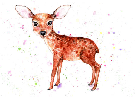 Fawn Watercolor illustration. A delicate little fawn. Beautiful, childrens illustration. Illustration for design, decor.